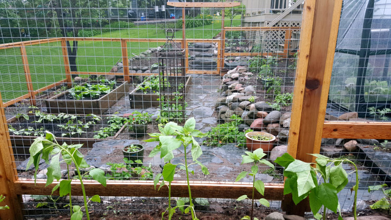 Edible Garden in Duluth